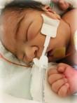 Baby Broly  HOULE