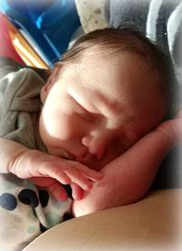 Baby Thomas WHISKEYJACK